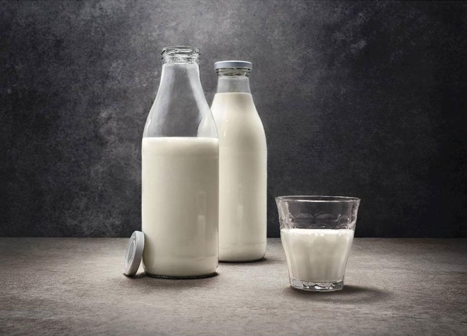 Tag der Milch 2019