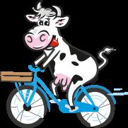 Weidenhof-Kuh
